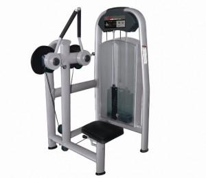 Pectoral Machine DF 1006